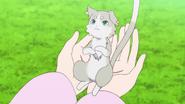 Pack - Re Zero Anime BD - 9