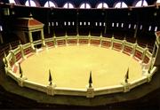 Arena de Capital Real - VC