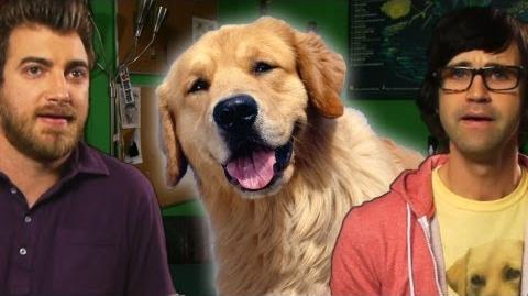 The Dog Curse