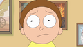 S2e5 morty smith.png