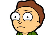 Jerry Morty