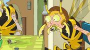 S4e1 wasp morty