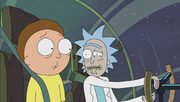 S1e1 morty unsure