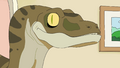 Photography Raptor.png