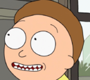 Morty Smith (C-137)