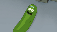 S3e3 pickle riiick