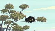 S2e10 birds on a cob