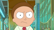 S3e7 mad morty