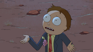 S1e6 morty what