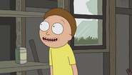 S1e1 smiling morty