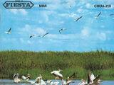 Fiesta (label)