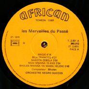 African 360.013 LA 1000