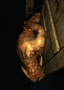 Xeno Sleeping