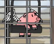 Flying Pig RT