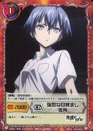Akuma no Riddle SiegKrone Gree Card Set (2)