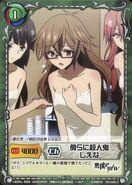 Akuma no Riddle SiegKrone Gree Card Set (26)