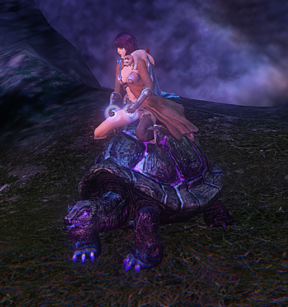 Shimmerwood Turtle - mount