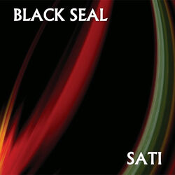 BlackSealSatiFront