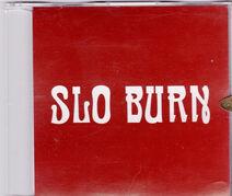 Slo Burn Demo