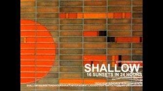SHALLOW - Cake Ape