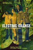 Roadburn 2012 - Electric Orange