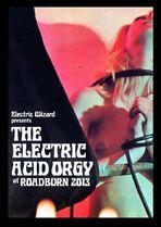 Roadburn 2013 - The Electric Acid Orgy