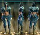 Guardian Raid Cloth Set