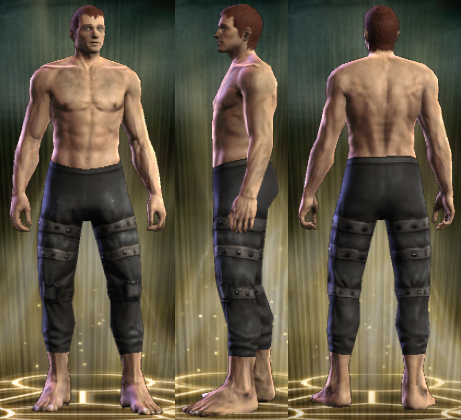File:PvP R4 Leather Seeker Legs Male.png