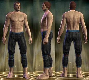 PvP R6 Leather Stalker Legs Male