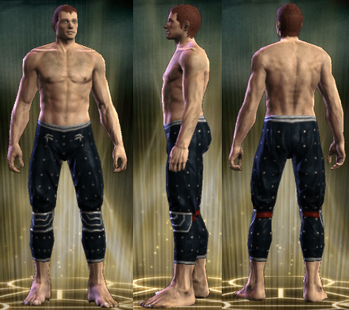 PvP R4 Cloth Seer Legs Male