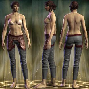PvP R6 Chain Leg Retributor Female