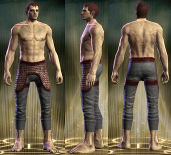 PvP R6 Chain Leg Retributor Male