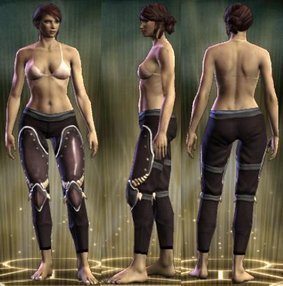 File:PvP R6 Plate Leg Brigadier Female.png