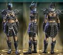 Defiant Raid Leather Set