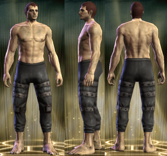 PvP R4 Leather Legs Seditionist Male
