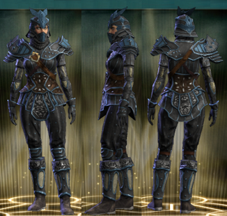 PvP R6 Leather Stalker Set Female
