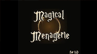 MagicalIcon