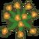 Plant Daylily