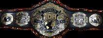 ROH World Tag Team 2018