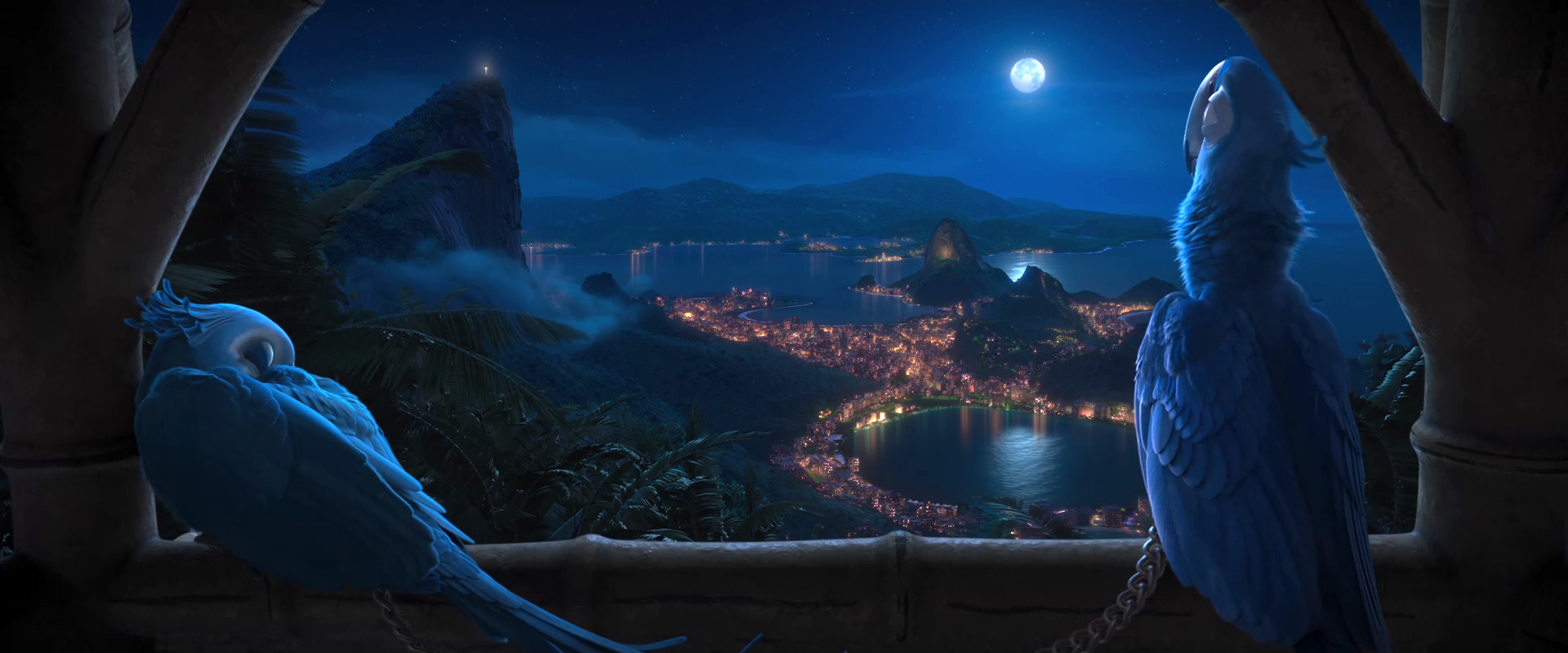 image - rio (movie) wallpaper - blu and jewel at night from vista