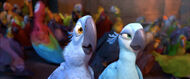 Blue-Parrots-Rio-the-Movie