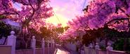 Rio (movie) wallpaper - Sunset from Santa Terasa Tram