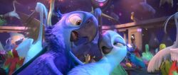 Blu and Jewel dance 2