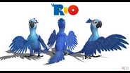 Rio jewel model ver1 5 by alpha920-d6d8u98
