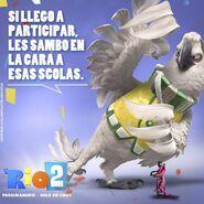 Nigel Rio 2 2
