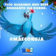 Rio 2 mãecoruja 04 - jade