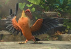 Audition bird