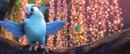 Blu 100-Jewel 100 75