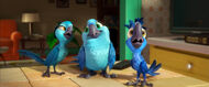 Rio-2-Official-Trailer-3-3