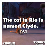 Rio-Wiki-100Days100Facts-021